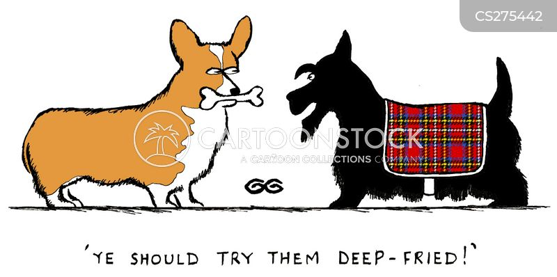scottish terrier cartoon