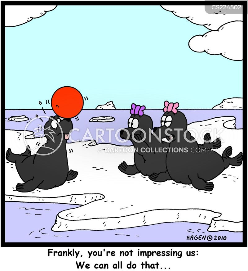seal tricks cartoon