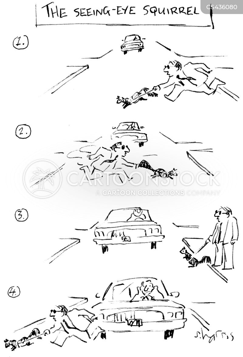 road-kills cartoon
