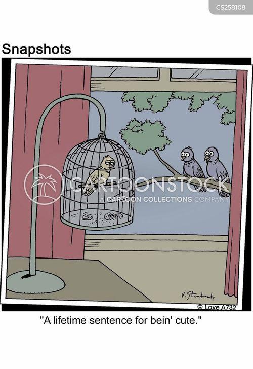 adorable cartoon