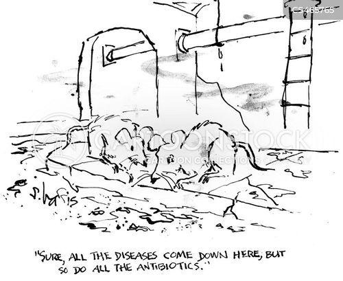 sewer rats cartoon