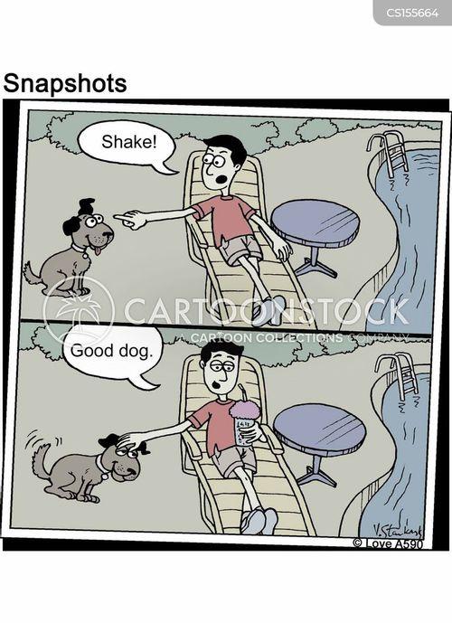 poolside cartoon