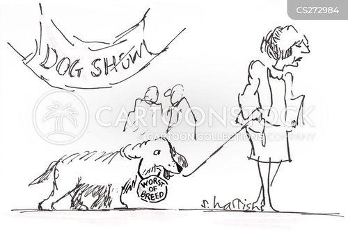 shameful cartoon