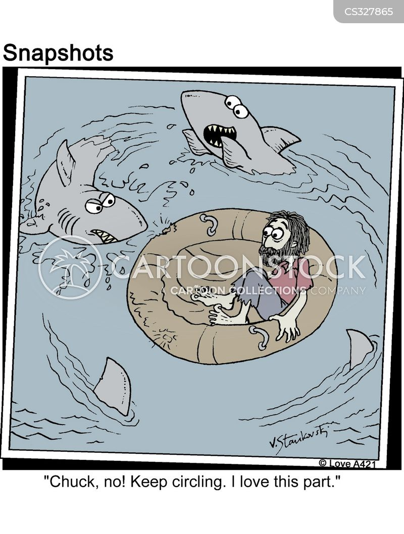 shark infested water cartoon