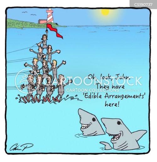 water skiing cartoon