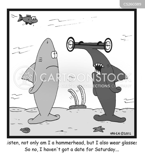 hammerheads cartoon