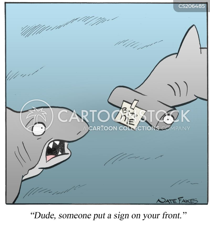 Image result for hammerhead shark jokes jokes