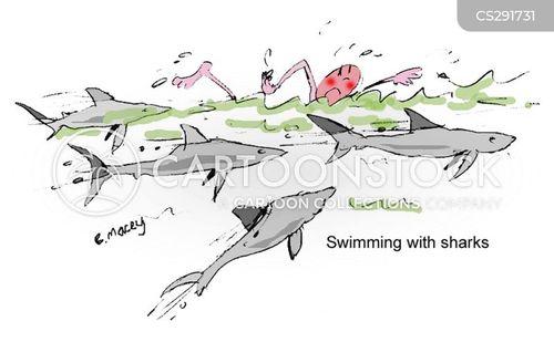 swimming with sharks cartoon