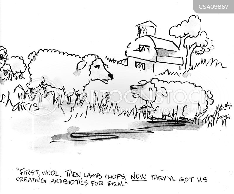 lamb chop cartoon