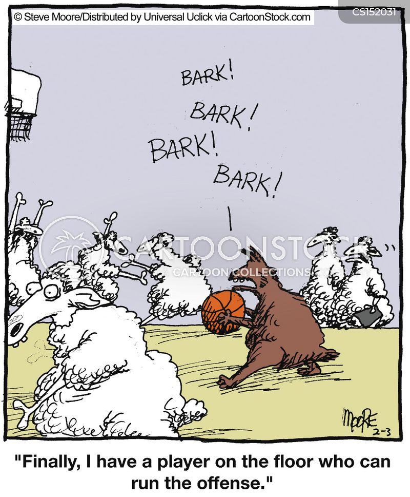 Sheepdogs Cartoons And Comics Funny Pictures From