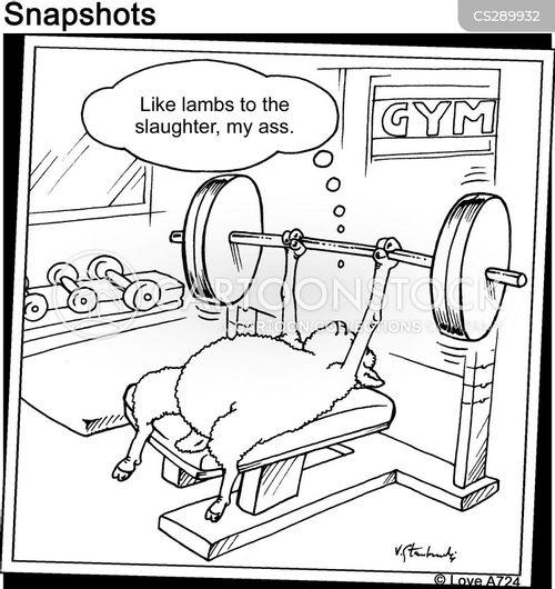 muscleman cartoon