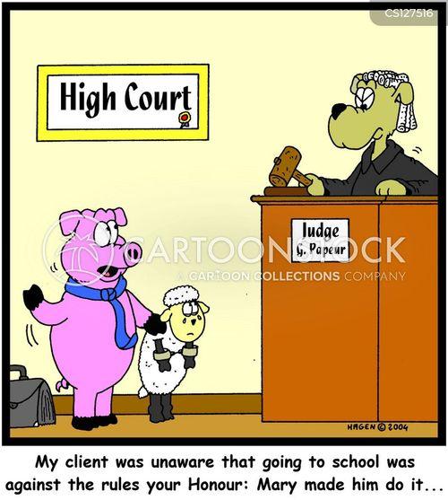 high courts cartoon