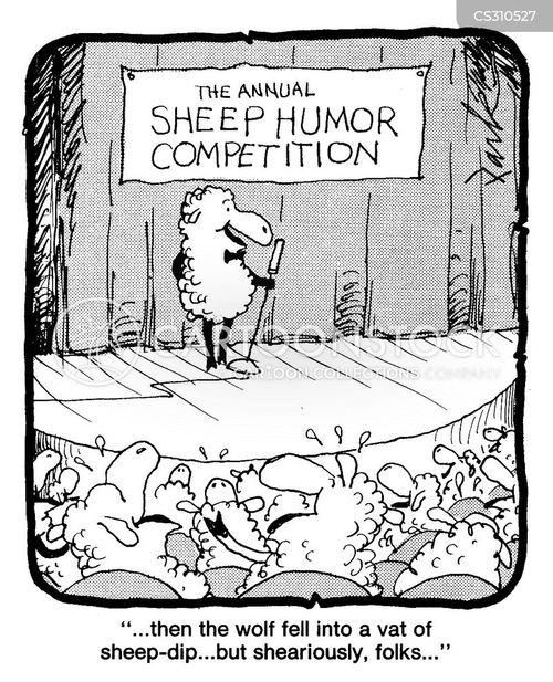 shearing sheep cartoon