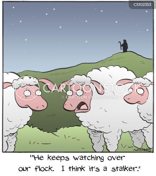flock of sheep cartoon