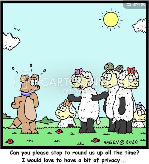 round-up cartoon