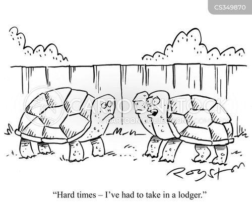 lodgers cartoon