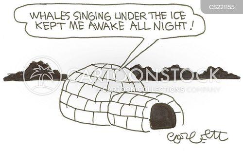 ice house cartoon