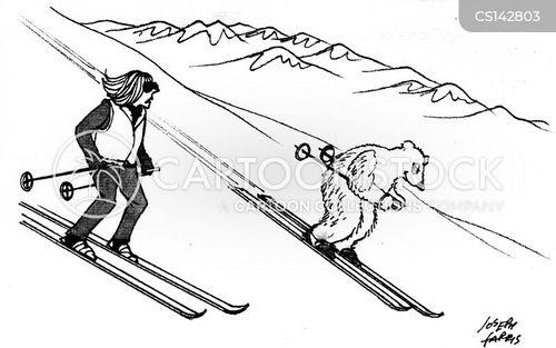 ski pole cartoon