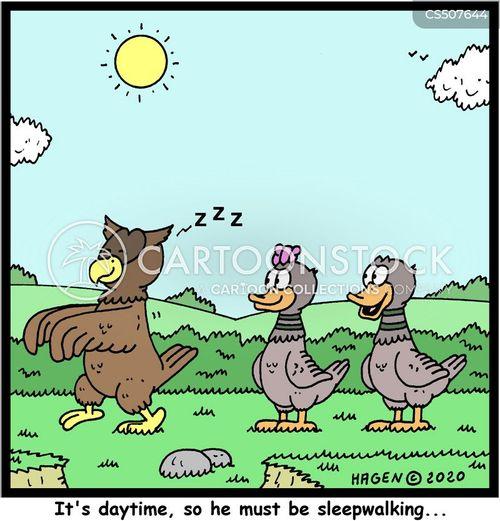 sleepwalks cartoon