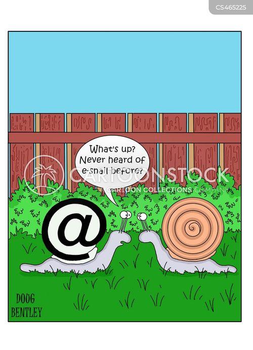 snail-mail cartoon