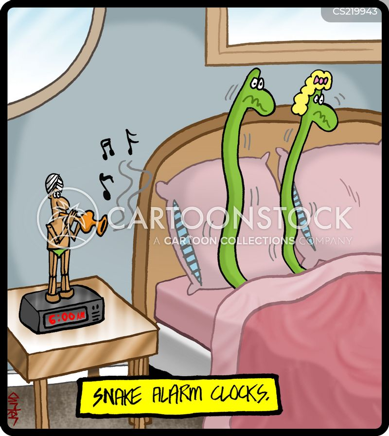 snake charmers cartoon