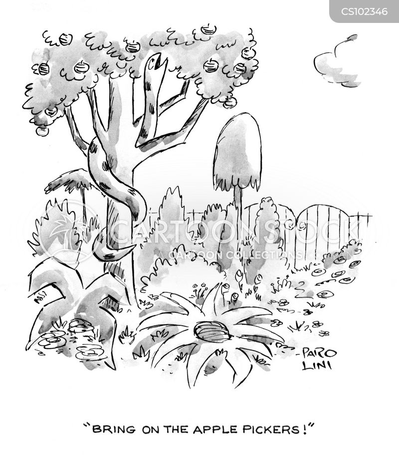 Apple Pickers cartoons, Apple Pickers cartoon, funny, Apple Pickers picture, Apple Pickers pictures, Apple Pickers image, Apple Pickers images, Apple Pickers illustration, Apple Pickers illustrations
