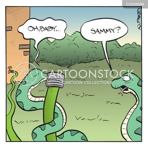 water hoses cartoon