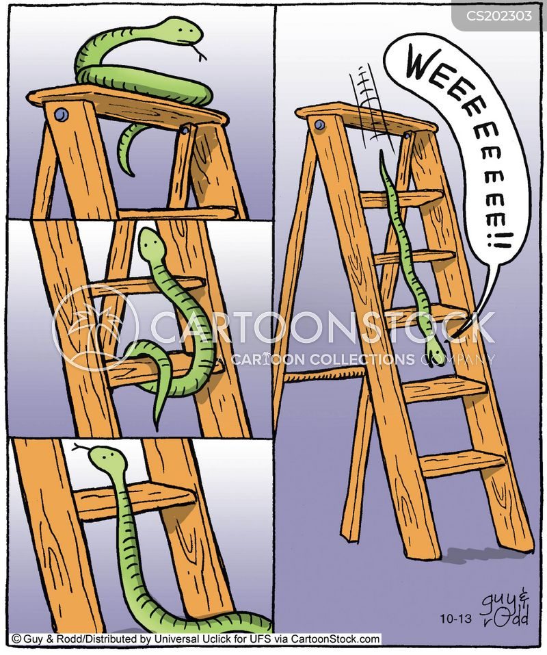 step ladder cartoon