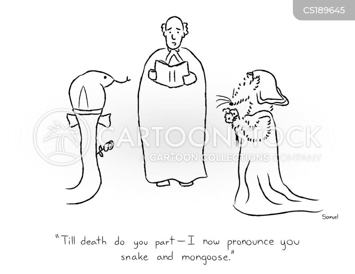 marriage vow cartoon