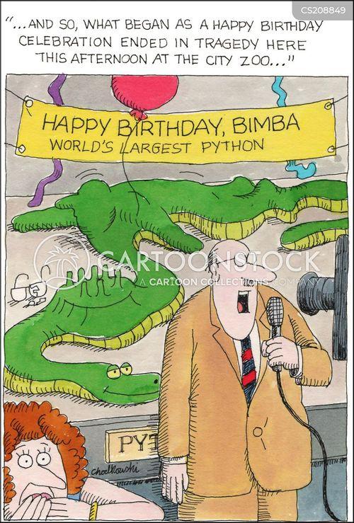 python cartoon