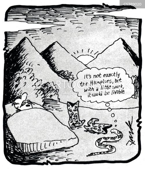 livable cartoon