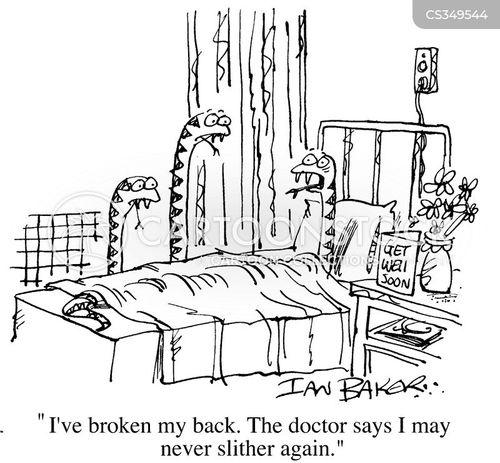 broken back cartoon