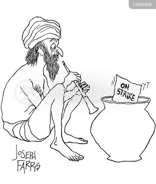 pungi cartoon
