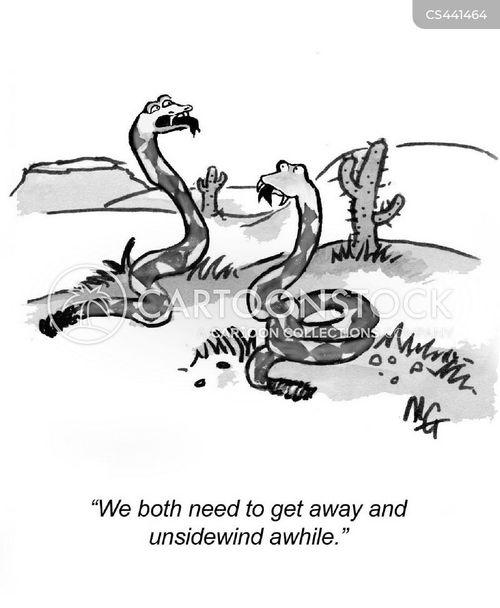 rattlesnakes cartoon