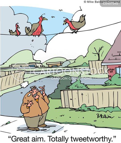 bird-poo cartoon