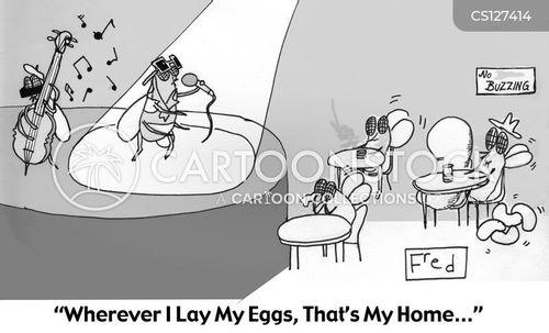 ballad cartoon