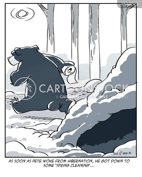 spring cleaner cartoon