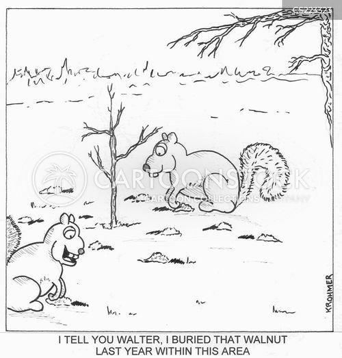 walnuts cartoon