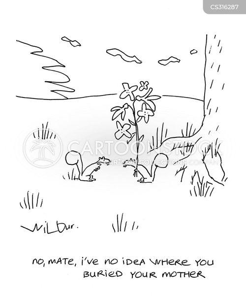 desert rat cartoon
