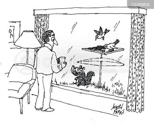 birdbaths cartoon