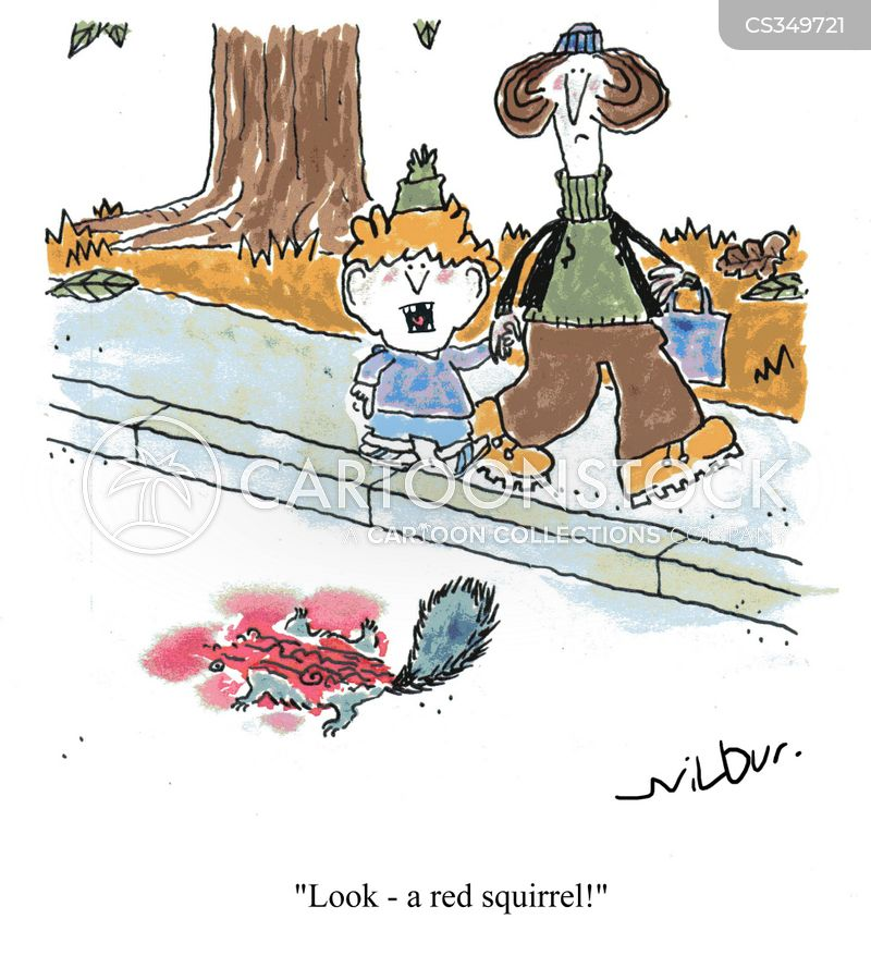 red squirrels cartoon