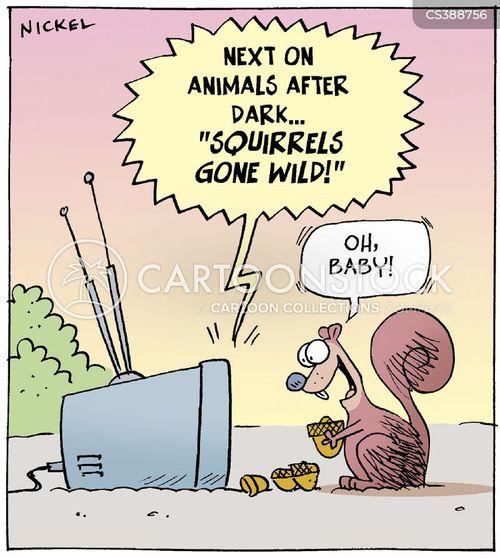 after dark cartoon