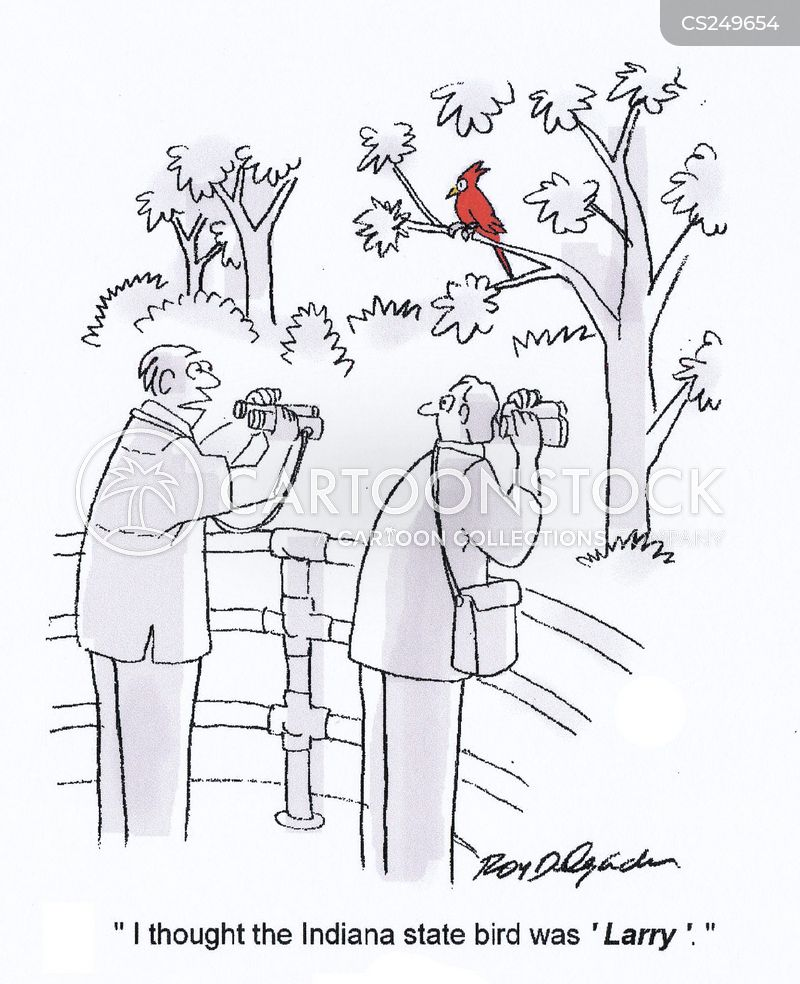 state bird cartoon