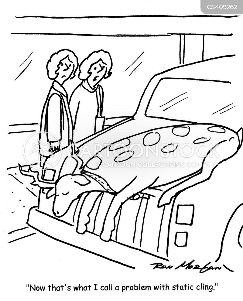 car trunks cartoon