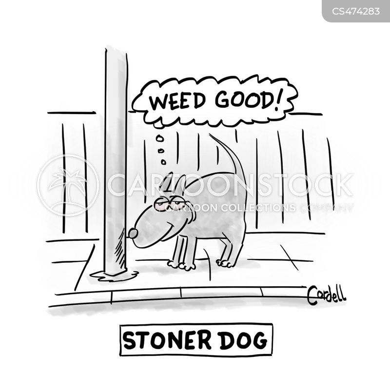 pot heads cartoon