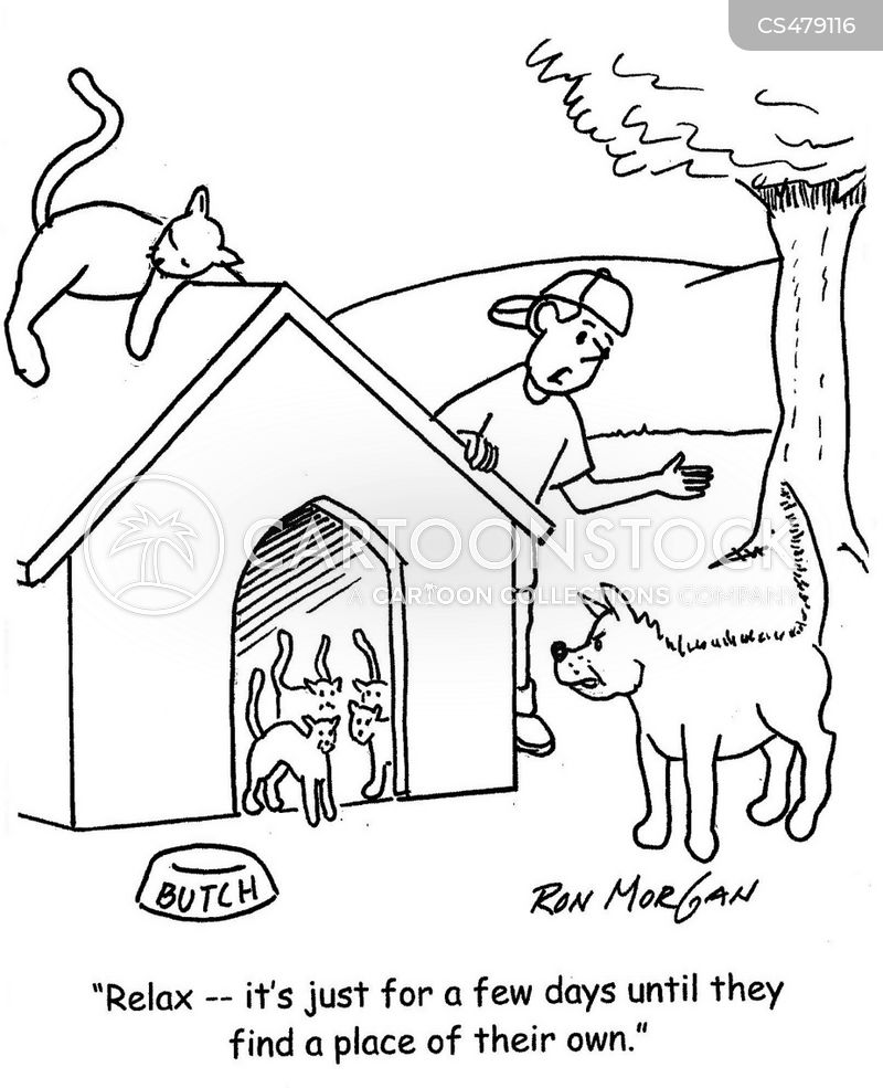 cat vs dog cartoon