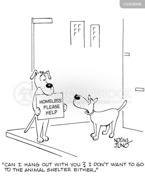 dog charities cartoon
