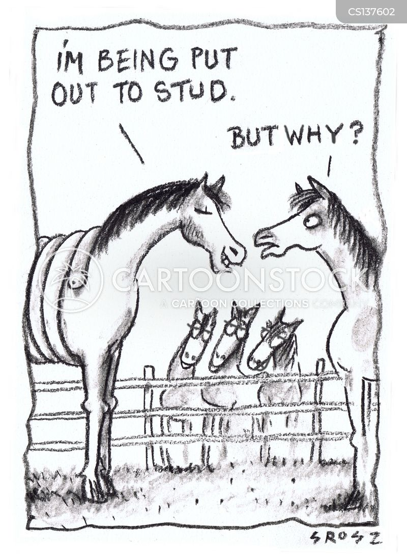 horse breeding cartoon