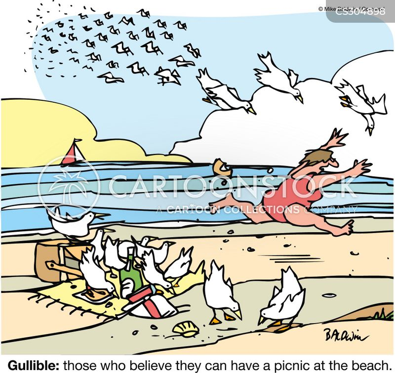 Gull Attacks cartoons, Gull Attacks cartoon, funny, Gull Attacks picture, Gull Attacks pictures, Gull Attacks image, Gull Attacks images, Gull Attacks illustration, Gull Attacks illustrations