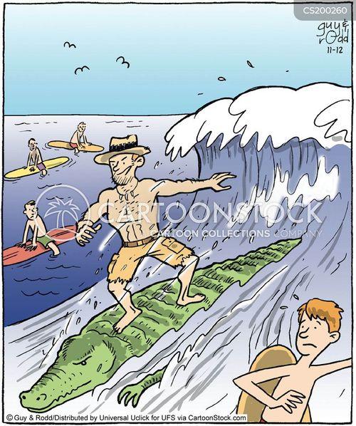 surfboards cartoon